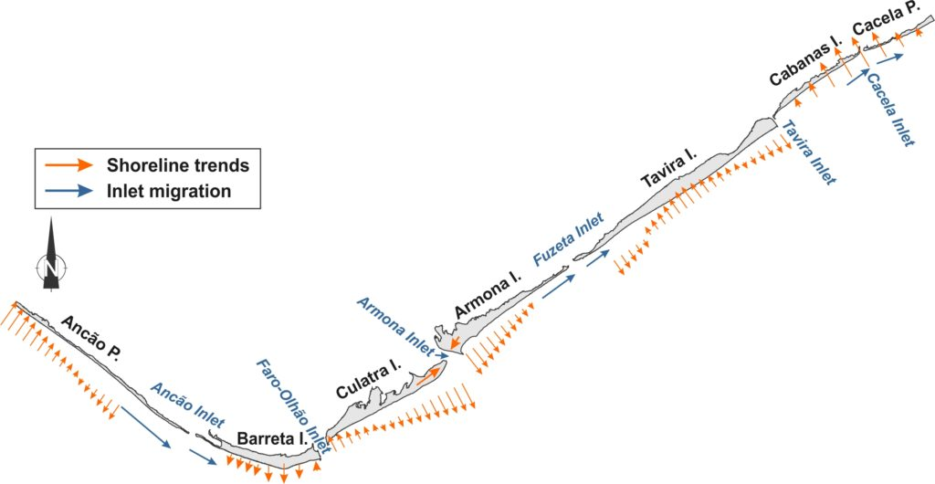 Fig. Schematic representation of the multi-decadal morphological response of the Ria Formosa barriers for 1952-2014. The major trends are noted as arrows (orange for shoreline and blue for Inlets) on the 2014 map. The shoreline trend of C-C reflects the 'net' barrier movement for the entire study period.