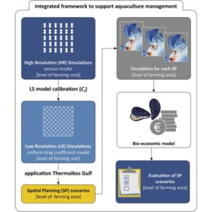 Rethinking suspended mussel-farming modelling: Combining hydrodynamic and bio-economic models to support integrated aquaculture management